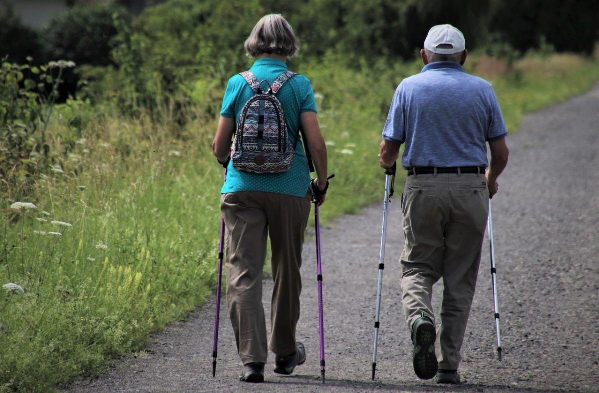 「散歩に行こう」に関する英語フレーズ