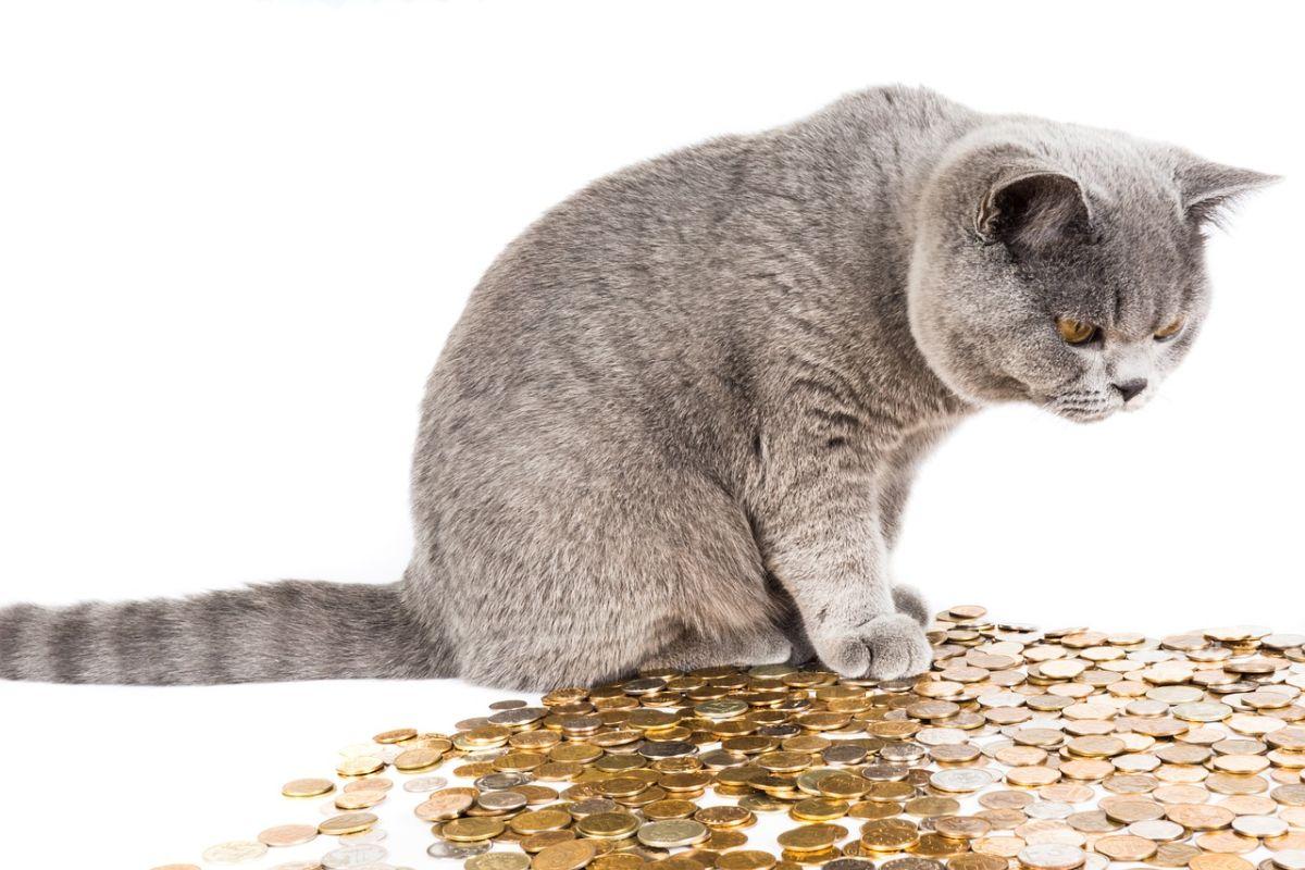 「お金を貸してもらえますか」に関連する英語フレーズ