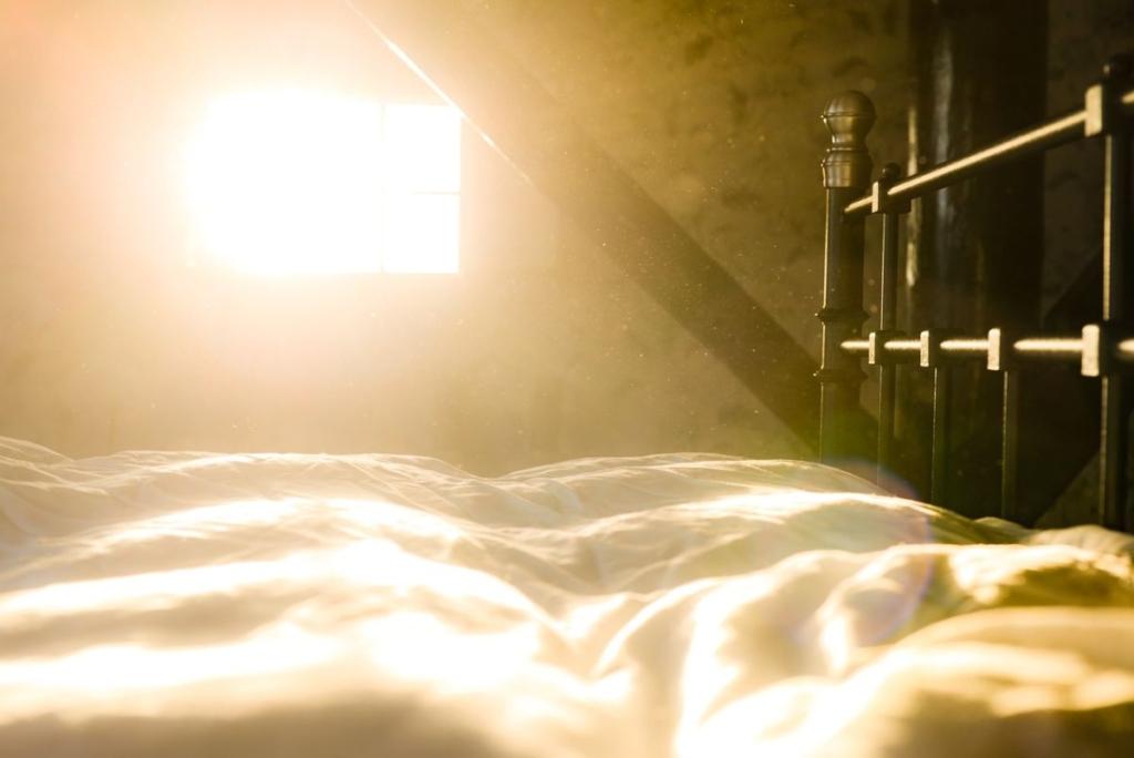 「目覚ましをかけ忘れた」に関連する英語フレーズ