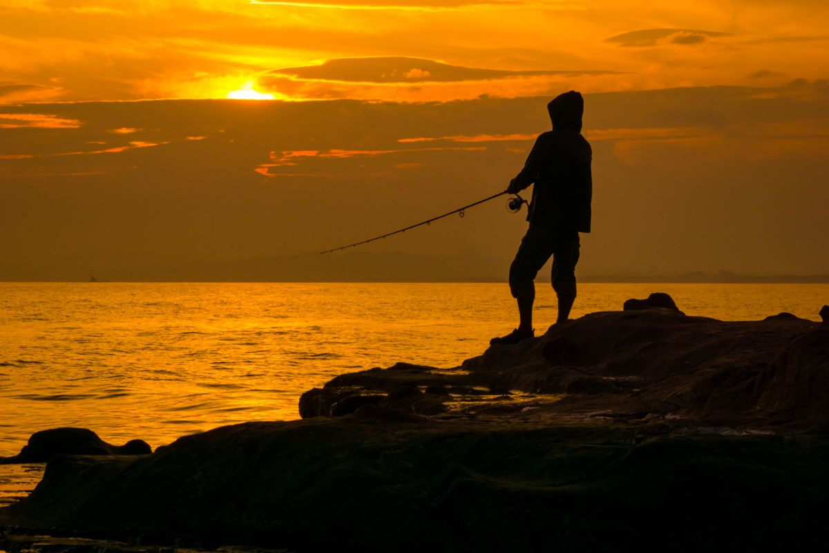 「釣りが趣味です」に関連する英語フレーズ