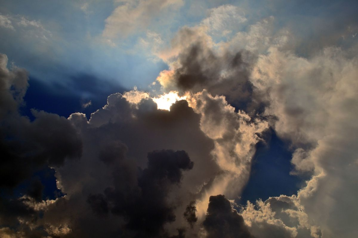 「天気予報見た?」に関連する英語フレーズ