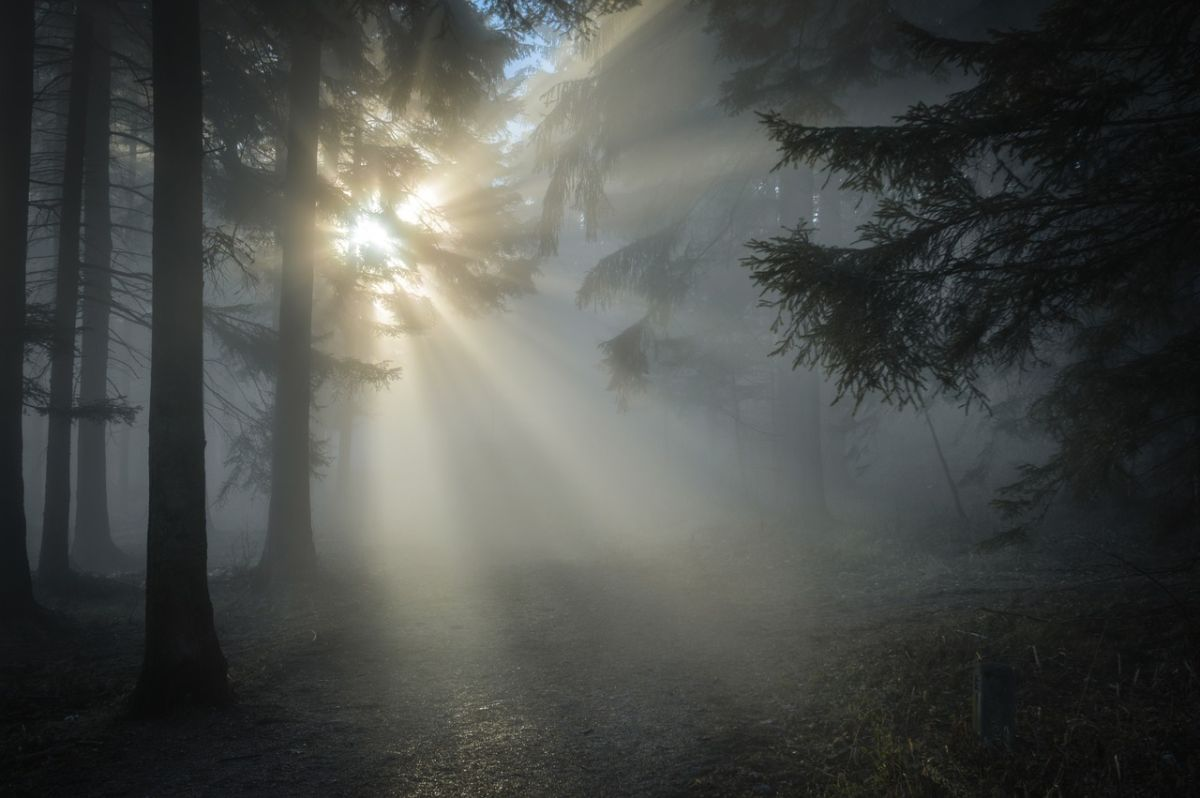 「太陽は西に沈む」に関連する英語フレーズ